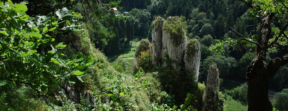 Góra Koronna - Skała Rękawica